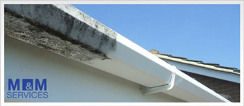 Before and after pictures of the cleaning process of gutters in Maidenhead Berkshire